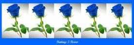 5-blue-roses