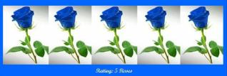 5-blue-roses
