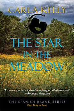 star-in-the-meadow